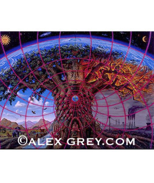 画像1: ALEX GREYポスター「GAIA」 (1)